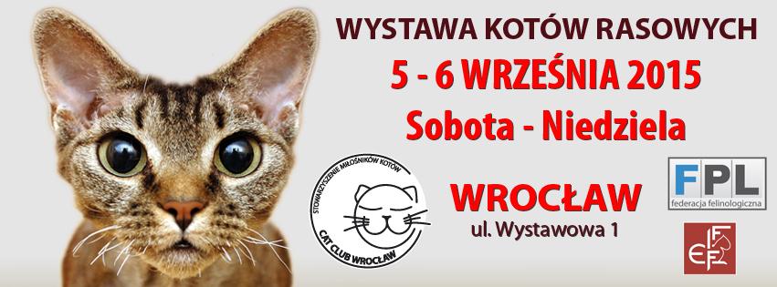 Wystawa Kotów Rasowych Wrocław